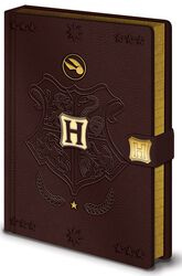 Quidditch - Premium Notebook