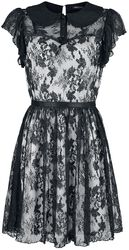 Lace Overlay Collar Dress