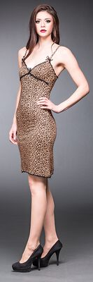 Leopard Dress With Lace