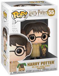 Harry Potter (Herbology) Vinyl Figure 55 (figuuri)