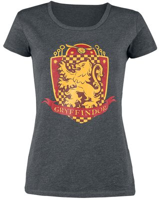 Gryffindor Quidditch