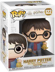 Harry Potter (Holiday) Vinyl Figure 122 (figuuri)