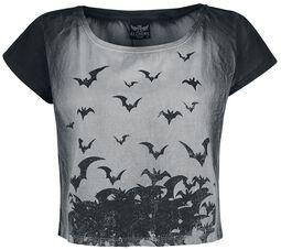 Bats Attack CS15