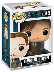 Remus Lupin Vinyl Figure 45 (figuuri)
