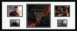 Online - Morrowind (Storyboard)