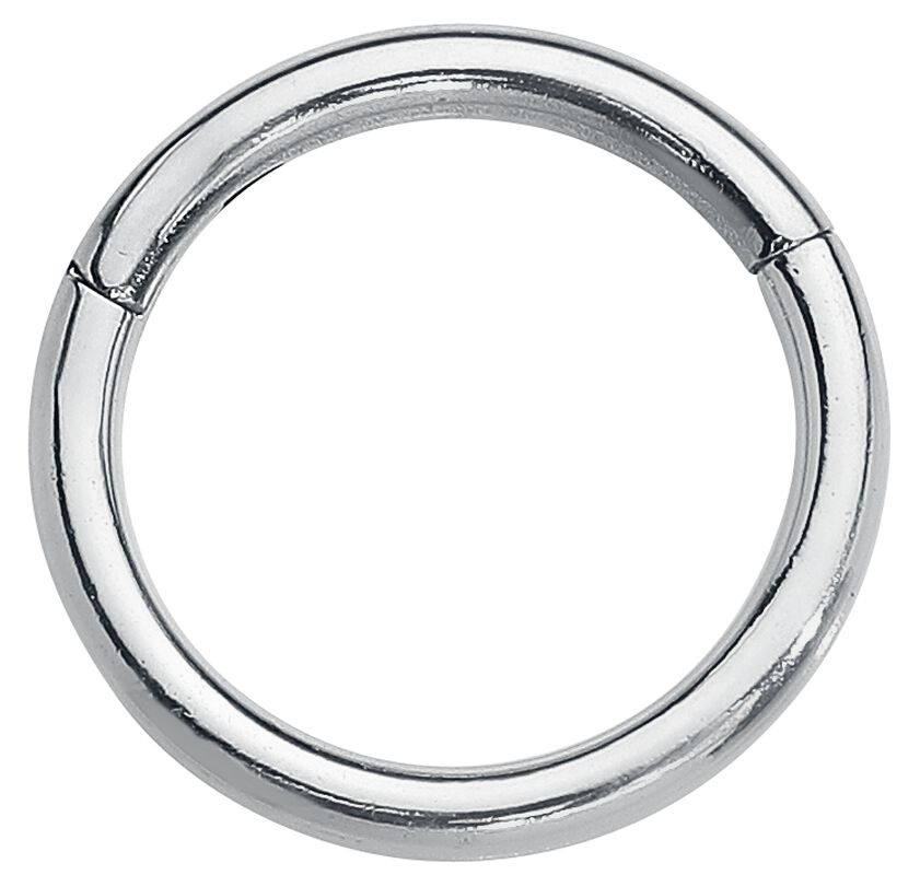 Segment Ring With Hinge