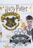 Hogwarts and Quidditch