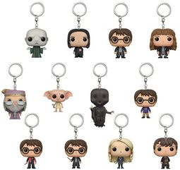 Mystery Pocket Pop Keychain