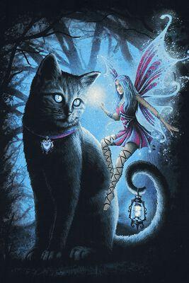 Cat And Fairy