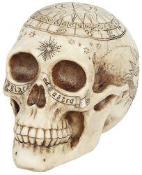 Astrological Skull