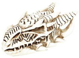 Dragon Skull: Miniature Skull