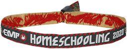 Homeschooling - festariranneke