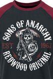Redwood Original