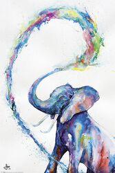 Marc Allante Elephant