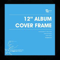 Vinyl Frame 12